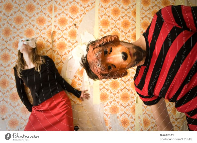 Woman Human being Man Cat Animal Adults Dog Feminine Couple Pair of animals Masculine In pairs Cool (slang) Retro Creativity Carnival