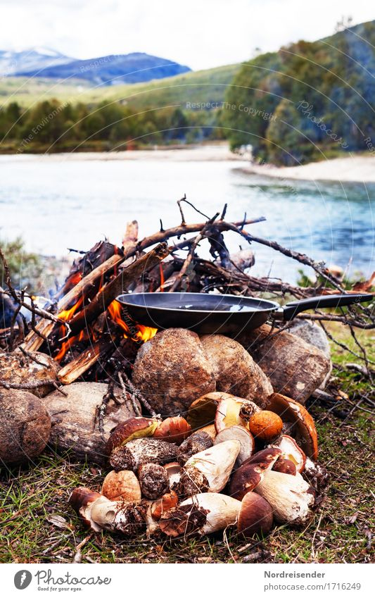 outdoor kitchen Food Nutrition Lunch Dinner Picnic Organic produce Vegetarian diet Pan Vacation & Travel Adventure Freedom Nature Landscape Elements Fire River