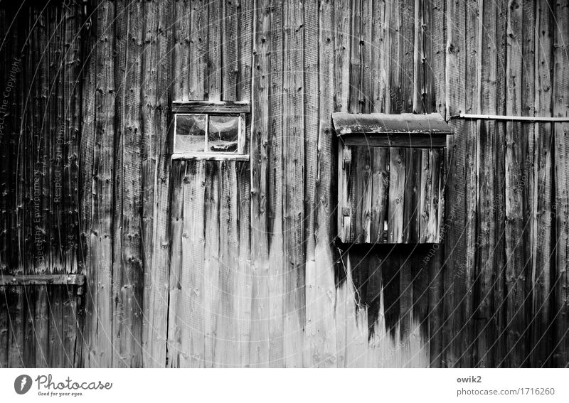 Old wooden gate Gate Building Barn door Hinge Window Wood Gloomy Decline Past Transience Wooden wall Derelict Damage Ravages of time lost places