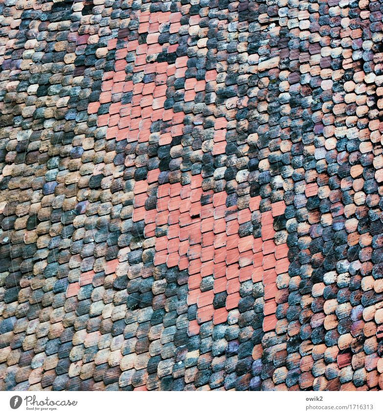 brickyard House (Residential Structure) Roof Roofing tile Above Many Colour photo Subdued colour Exterior shot Detail Abstract Pattern Structures and shapes