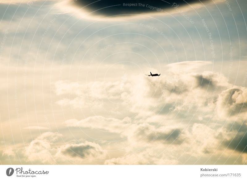 Sky Vacation & Travel Clouds Loneliness Freedom Emotions Moody Air Horizon Airplane Flying Large Aviation Longing Infinity Discover