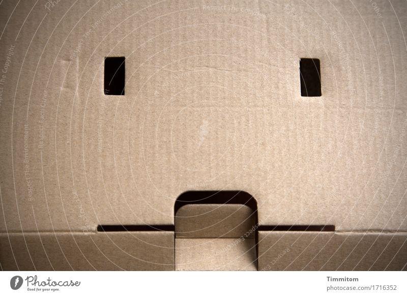 Fear Hollow Concern Cardboard Beige Carton Slit Anxious