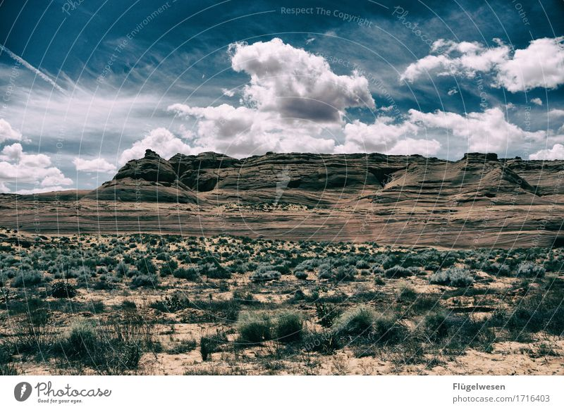 Beautiful America (j) Sky Clouds Day Shadow Mountain Grand Canyon Americas USA Landscape Plant Animal Vantage point Far-off places Deserted Bushes