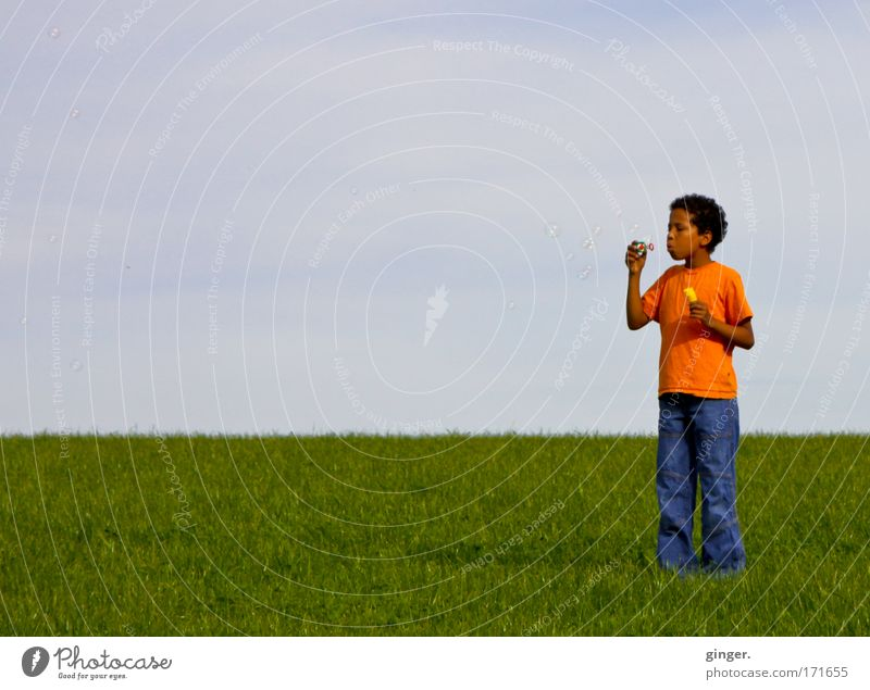 Human being Child Sky Nature Youth (Young adults) Green Summer Meadow Landscape Boy (child) Grass Moody Orange Infancy Horizon Leisure and hobbies