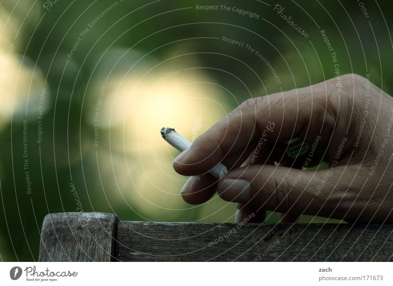 Human being Hand Green Relaxation Wood Garden Contentment Skin Fingers Smoking To hold on Illness Ring Smoke Stress Cigarette