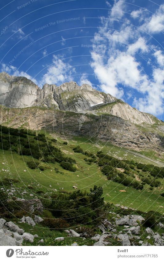 Cloud's in the Alps Colour photo Exterior shot Deserted Day Shadow Contrast Sunbeam Trip Far-off places Freedom Nature Landscape Plant Animal Elements Sky