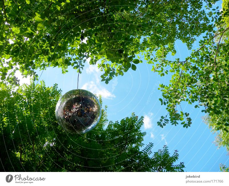Sky Blue Green Tree Joy Clouds Leaf Feasts & Celebrations Party Metal Air Art Leisure and hobbies Dance Elegant Modern