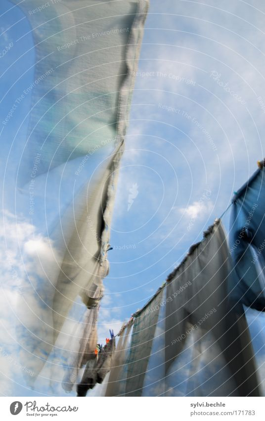 windswept Sky Clouds Summer Climate Wind Garden Pants Movement Flying Fresh Cleanliness Purity Laundry Clothesline Clothes peg Wind speed Rope Towel Underpants