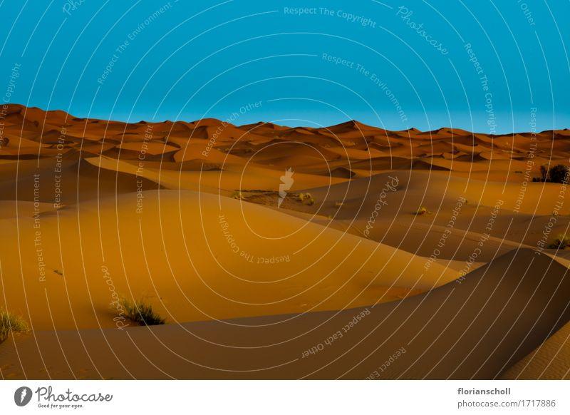 Sahara Desert, desert Vacation & Travel Nature Sand Beautiful Contentment Relaxation Freedom adventure Africa blue dune golden hot hill landscape Merzouga