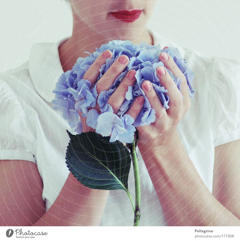 no lilac Colour photo Interior shot Close-up Day Feminine Mouth Hand Fingers 1 Human being Moody