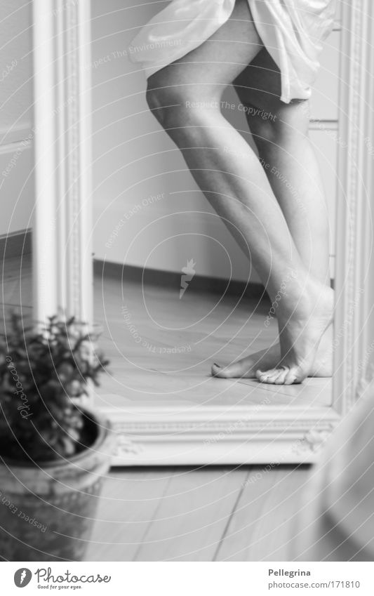 How from alabaster Black & white photo Interior shot Deep depth of field Feminine Young woman Youth (Young adults) Legs Feet 1 Human being Moody Day