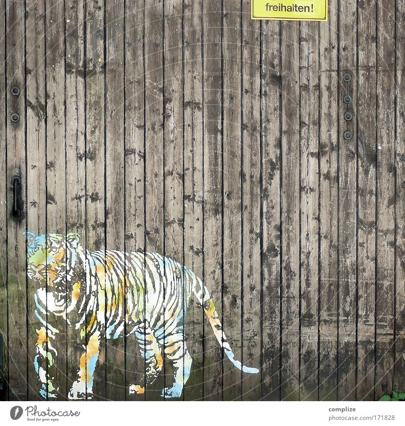 safari Colour photo Copy Space right Copy Space top Animal Wild animal Zoo Tiger 1 Sign Characters Signage Warning sign Environment Bans Highway ramp (exit)