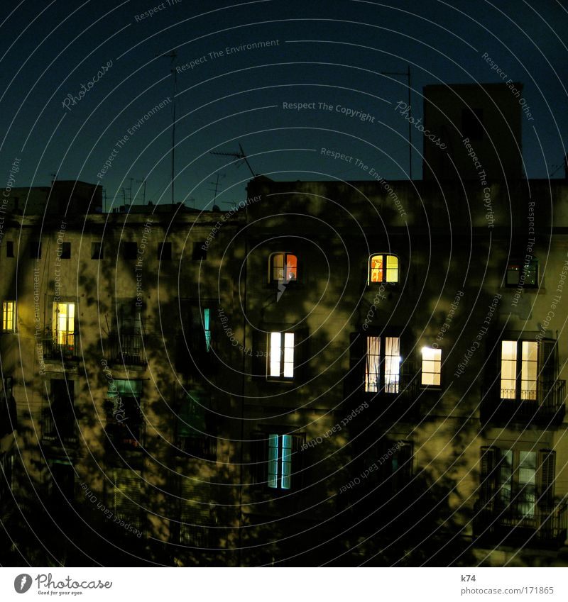 COURTYARD AT NIGHT Colour photo Exterior shot Night Old town House (Residential Structure) Facade Window Antenna Flying Looking Sleep Dream Shadow Tree Light