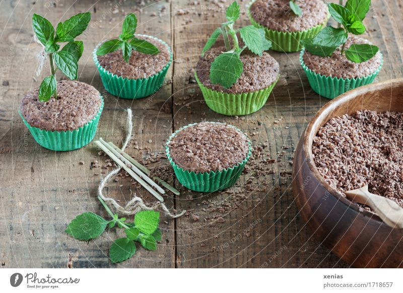 Muffins with cake and herbs like in the nursery Cake Chocolate cake Dough Baked goods Candy Herbs and spices Mint Lemon Balm Chocolate crumble Sugar