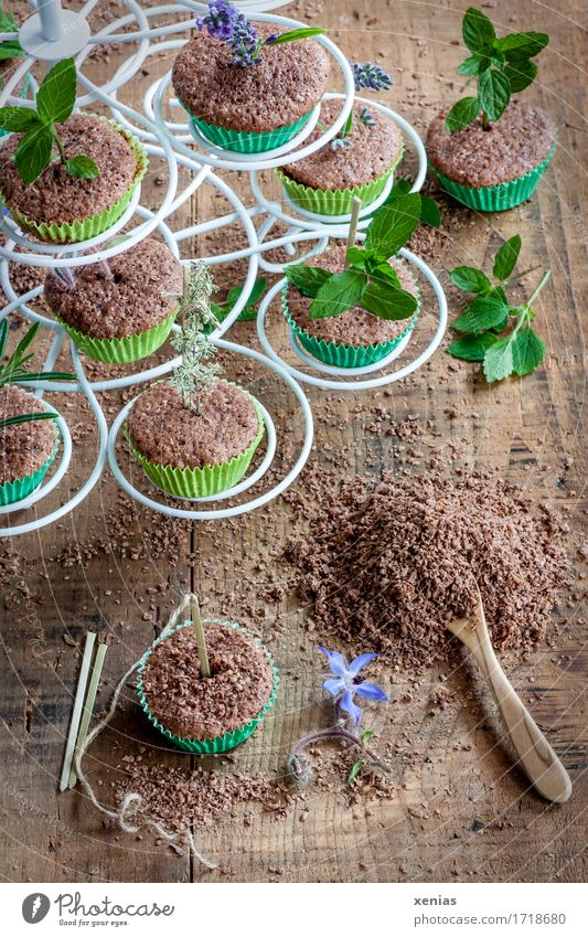 white etagere with chocolate cake muffin and its preparation Cake Etagere Dough Baked goods Chocolate Herbs and spices Muffin Chocolate crumble Spoon