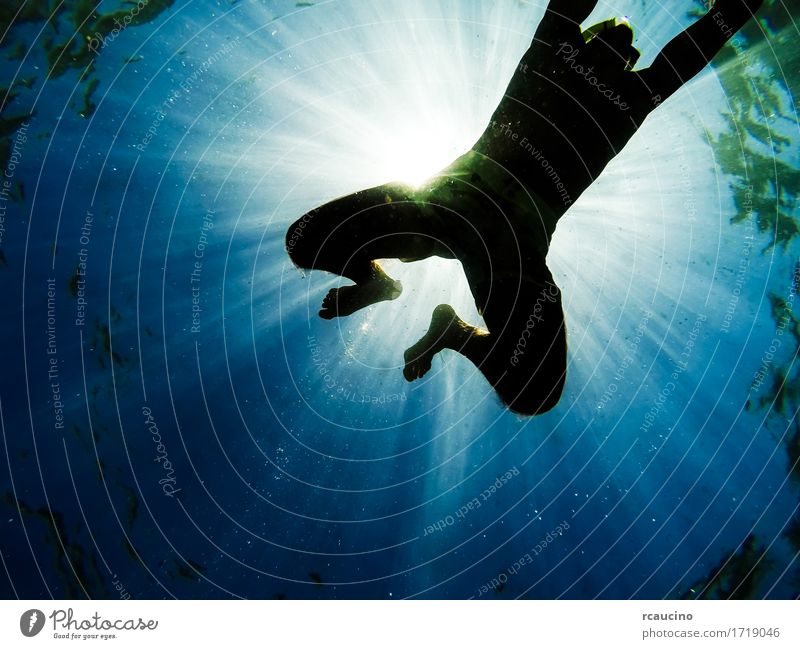 Man swimming in the sea seen from below Human being Blue Summer Sun Ocean Adults Boy (child) Dive Deep Ray Snorkeling Swimmer (professional sportsman)