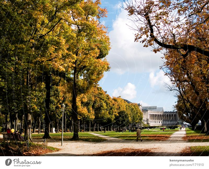 Jubel Park Colour photo Exterior shot Central perspective Panorama (View) Wide angle Landscape Summer Beautiful weather Tree Garden Brussels Belgium Europe