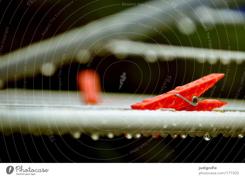 Dryer, wet Colour photo Exterior shot Day Wet Red Holder Clothes peg Tumble dryer Drops of water Rain Housekeeping