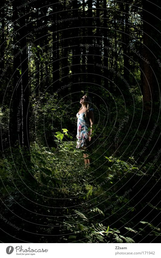 Human being Nature Youth (Young adults) Beautiful Loneliness Forest Feminine Dark Environment Adults Think Sadness Blonde Fear Elegant Stand