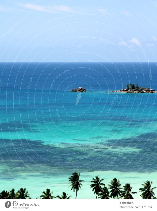 unobstructable view Vacation & Travel Tourism Adventure Far-off places Freedom Sky Clouds Beautiful weather Palm tree Waves Coast Beach Reef Coral reef Ocean