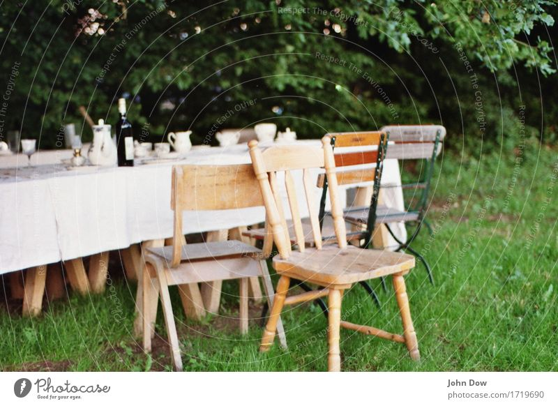 summer banquet Lifestyle Style Living or residing Furniture Chair Table Feasts & Celebrations Eating Drinking Thanksgiving Landscape Beautiful weather Garden