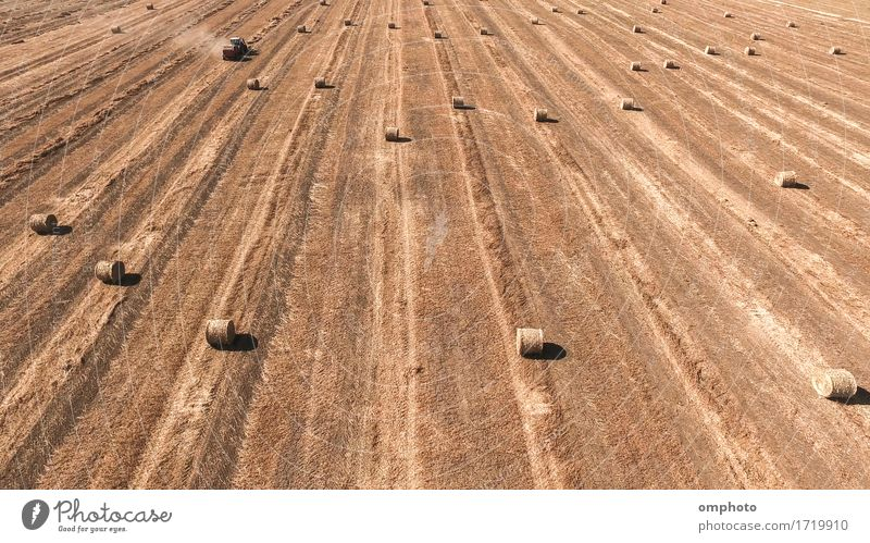 Aerial image of a tractor straw baler working in an agricultural field Summer Work and employment Industry Machinery Nature Landscape Plant Tractor bales