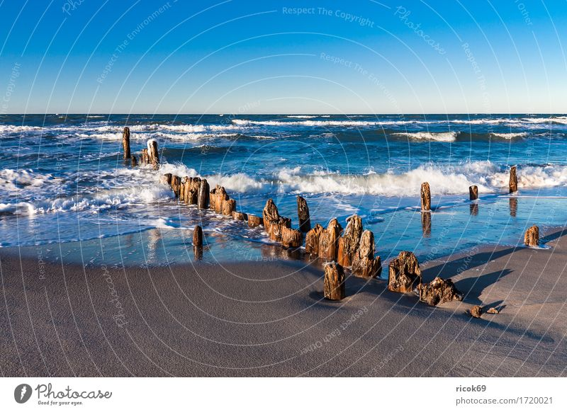 Buhnen at the coast of the Baltic Sea Relaxation Vacation & Travel Tourism Beach Ocean Waves Nature Landscape Water Cloudless sky Gale Coast Wood Blue Romance