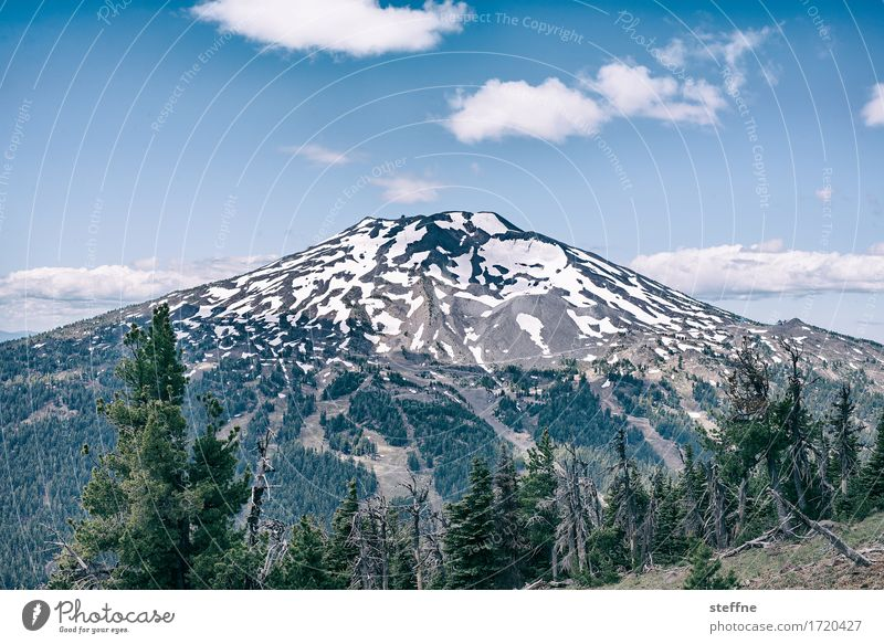 Mt. Fuji, at least almost. Nature Landscape Sky Summer Beautiful weather Mountain Peak Snowcapped peak Volcano Idyll Tourism Vacation & Travel Hiking Oregon USA