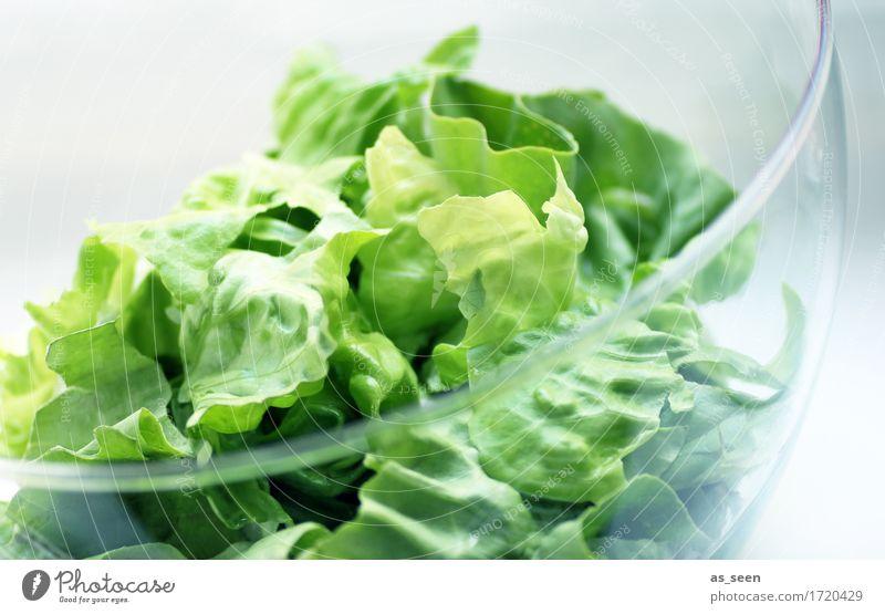 veggie day Food Vegetable Lettuce Salad Nutrition Lunch Buffet Brunch Organic produce Vegetarian diet Diet Fasting Bowl Lifestyle Wellness Kitchen