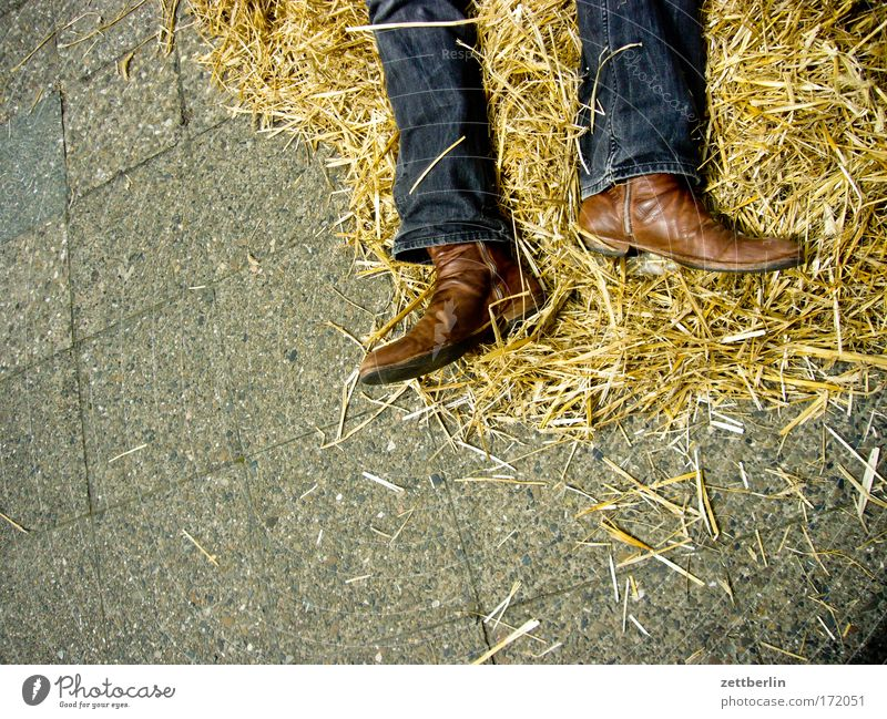 wild west Straw Cowboy Boots cowboyboots cowboy boots Jeans Denim Clothing Legs Lie Death Shoot dead Sacrifice Corpse Exhaustion Sleep flipped Dream Wild West