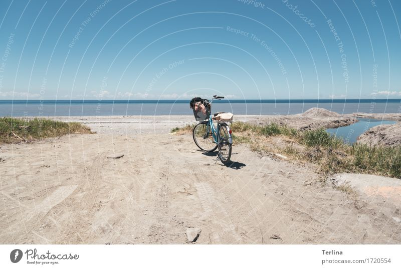 Vacation & Travel Blue Green Loneliness Joy Beach Yellow Natural Movement Sports Freedom Leisure and hobbies Hiking Bicycle To enjoy