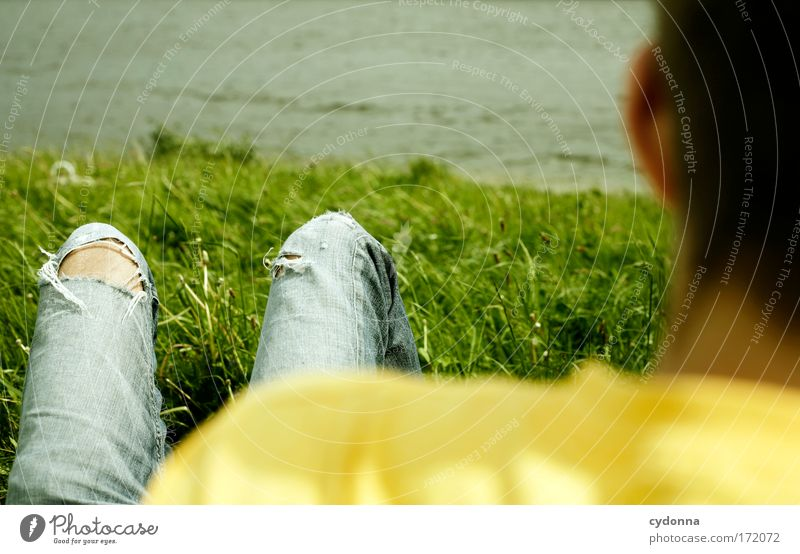 Human being Man Nature Summer Life Meadow Freedom Emotions Landscape Environment Grass Dream Sadness Legs Adults Lake