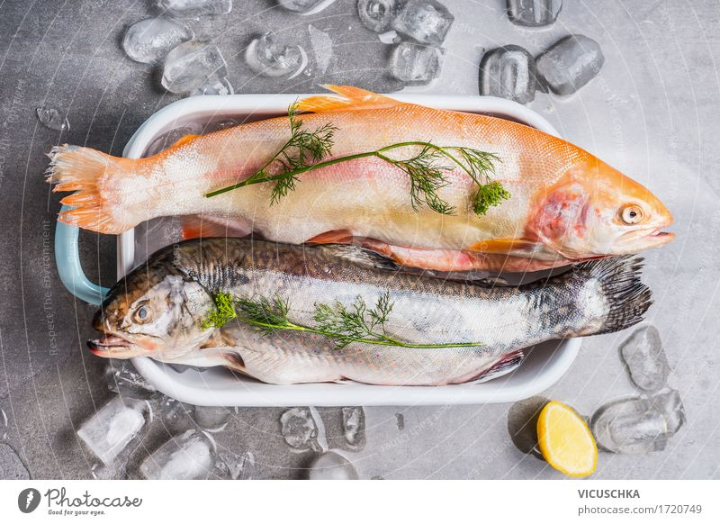 Trout in a bowl with ice cubes and cooking ingredients Food Fish Herbs and spices Nutrition Lunch Dinner Banquet Organic produce Vegetarian diet Diet Bowl Style