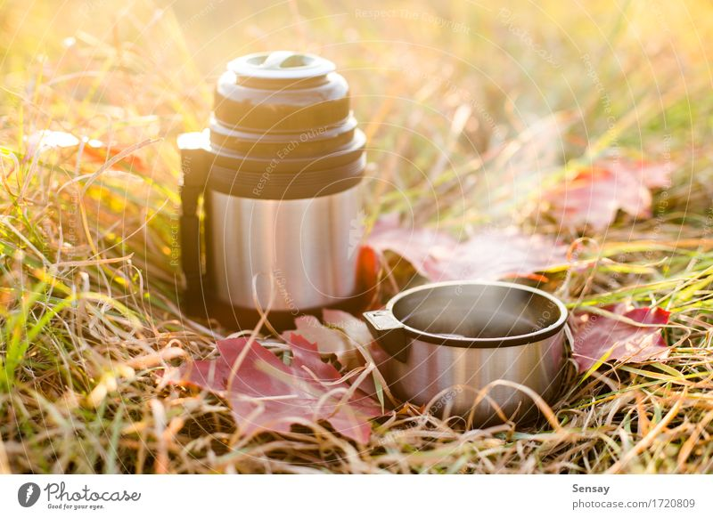 Vacuum flask on autumn background Coffee Tea Bottle Joy Vacation & Travel Trip Adventure Autumn Warmth Grass Leaf Park Metal Steel Hot Red White thermos mug