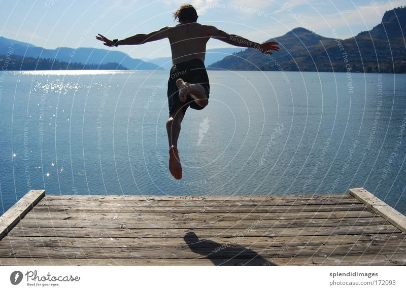 Jump into cold water Colour photo Exterior shot Copy Space left Copy Space right Day Light Shadow Contrast Silhouette Reflection Sunlight Sunbeam Back-light