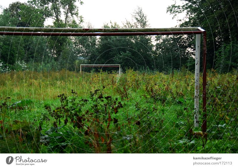 Sport free Colour photo Exterior shot Deserted Day Central perspective Ball sports Football pitch Nature Plant Meadow Village Places Goal Green