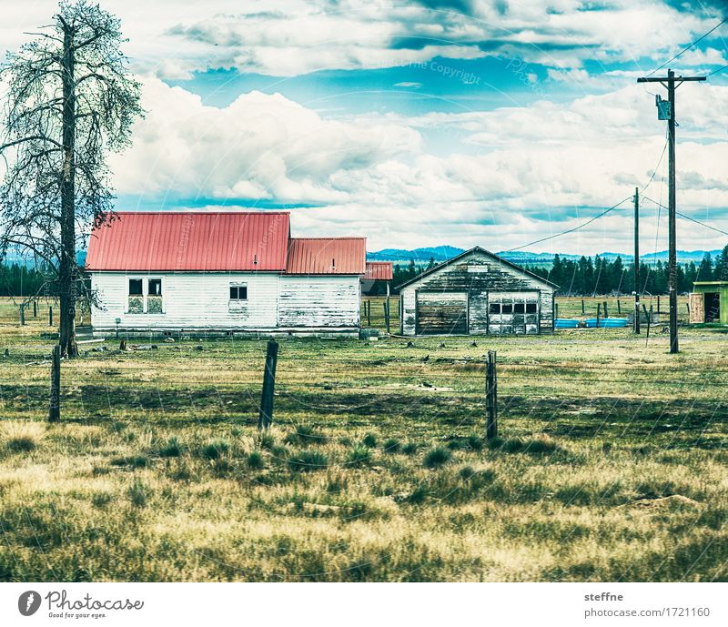 farm House (Residential Structure) Hut Gloomy Dry USA Oregon Farm Agriculture Colour photo Exterior shot Copy Space top Copy Space bottom