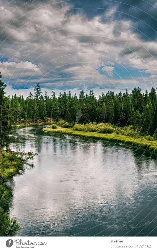 wilderness Nature Landscape Elements Water Sky Clouds Summer Tree Forest River bank Hiking USA Oregon Stone pine Picturesque Idyll Bob Ross Threat Dark
