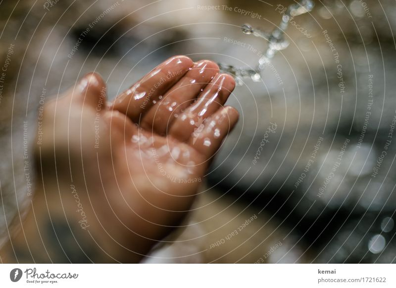 Swabian countryside | Water feature Playing Trip Adventure Human being Life Hand Fingers Palm of the hand 1 Drops of water Brook Throw Happiness Glittering Cold