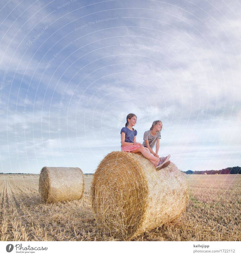 holiday start Human being Child Girl Boy (child) Brothers and sisters Sister Life 2 Environment Nature Landscape Summer Field Sit Playing Straw Bale of straw