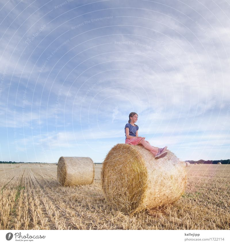 Girl on hay bales girl Infancy Life 1 Human being Environment Nature Landscape Beautiful weather Field Sit Bale of straw Relaxation Future smile Calm Summer