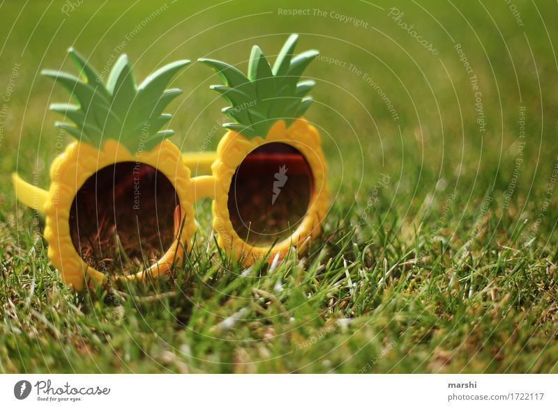 summer feeling Leisure and hobbies Flat (apartment) Sign Yellow Green Emotions Moody Sunglasses Eyeglasses Funny Pineapple Style Garden Meadow