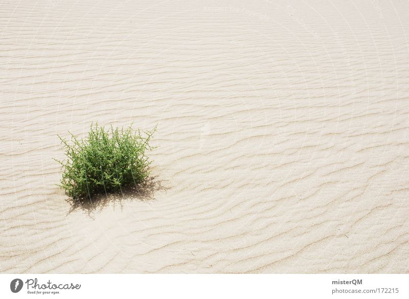 Water Green Summer Loneliness Life Warmth Sand Weather Climate Desert Infinity Dry Surrealism Eternity Hard Extreme