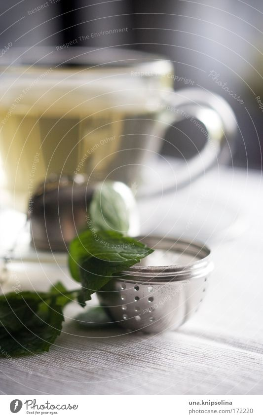Water Relaxation Calm Warmth Healthy Contentment Nutrition Cooking & Baking Joie de vivre (Vitality) Beverage Serene Common cold Tea Cup Medicinal plant To have a coffee