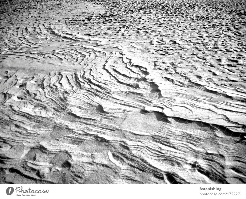 Snow - Relief Environment Nature Winter Ice Frost Cold White Black & white photo Exterior shot Deserted Shadow Contrast Background picture Snow layer Snowscape