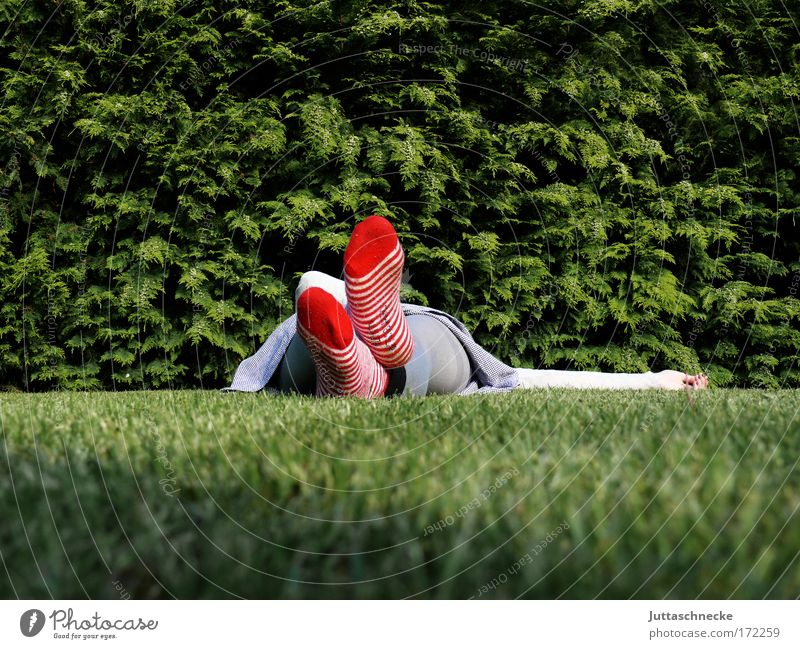 Woman Red Calm Relaxation Meadow Grass Contentment Sleep Break Peace Fatigue Stockings Well-being Peaceful Rest Human being
