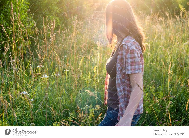 Woman Human being Nature Youth (Young adults) Beautiful Plant Summer Calm Grass Warmth Contentment Fashion Adults Walking Jeans
