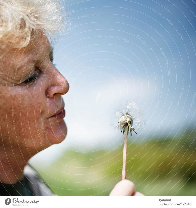 dandelion Human being Woman Adults Female senior Senior citizen Face 45 - 60 years Environment Nature Sky Plant Flower Foliage plant Effort Contentment Movement