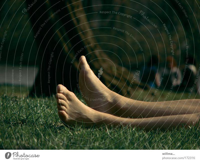 Human being Summer Vacation & Travel Calm Relaxation Meadow Freedom Feet Park Legs Sleep Lie Fatigue Boredom Sunbathing Well-being