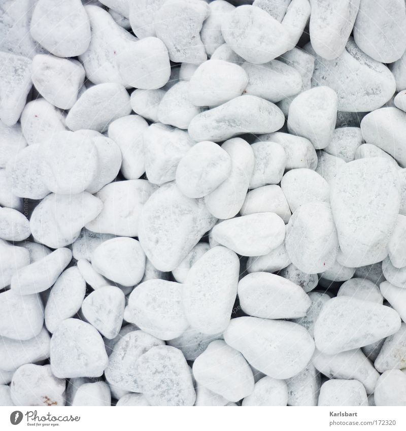 white. stoned. Design Life Well-being Senses Media industry Art Sculpture Print media Nature Summer Ground Stone Round White Purity Esthetic Far-off places
